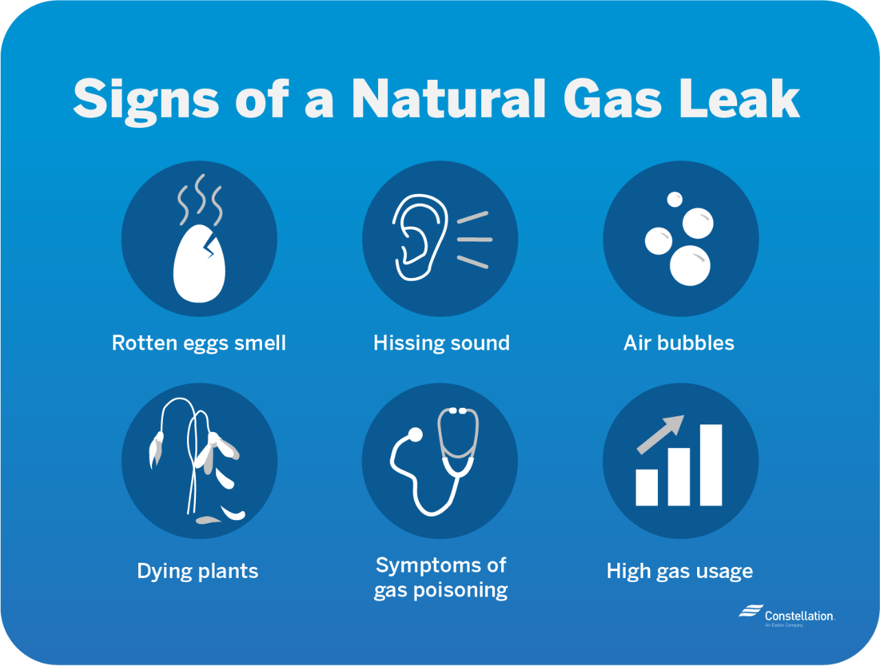 Rotten eggs smell, hissing sounds, air bubbles in standing water outdoors, dying plants, symptoms of gas poisoning, and high gas usage all can indicate a natural gas leak.